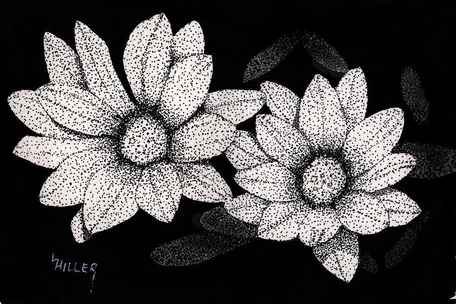 Pen And Ink Drawing - Gerbera Daisies by Linda Hiller