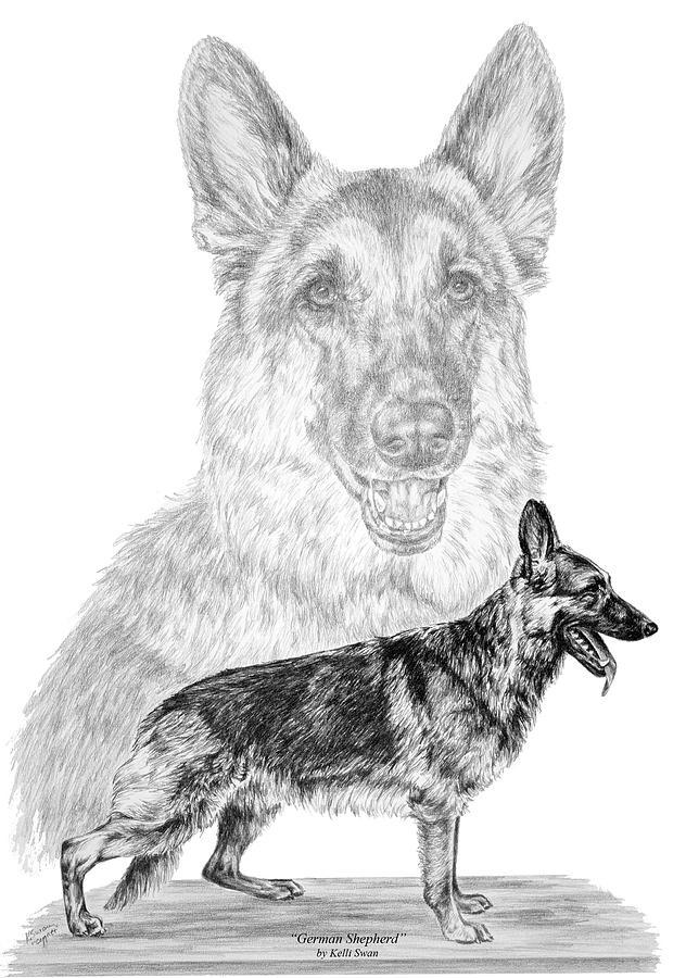 German Shepherd Dogs Print Drawing By Kelli Swan