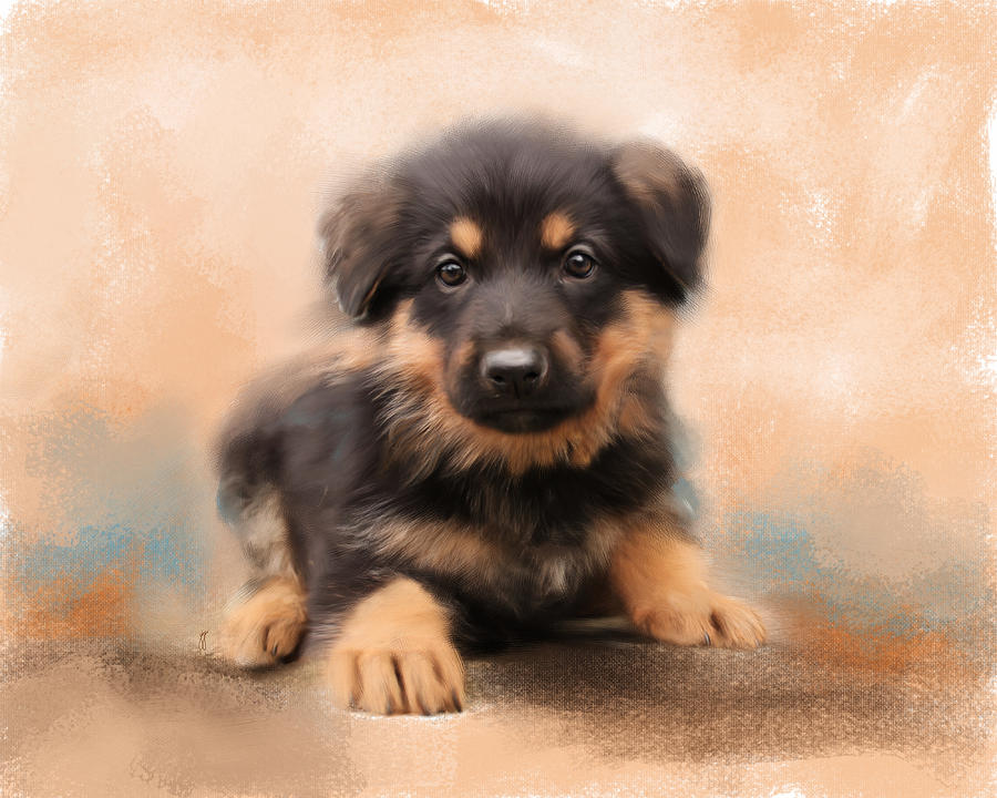 Animal Painting - German Shepherd Puppy Portrait by Jai Johnson