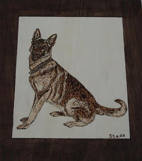 Landscape Pyrography - German Shepherd by Steven Steven