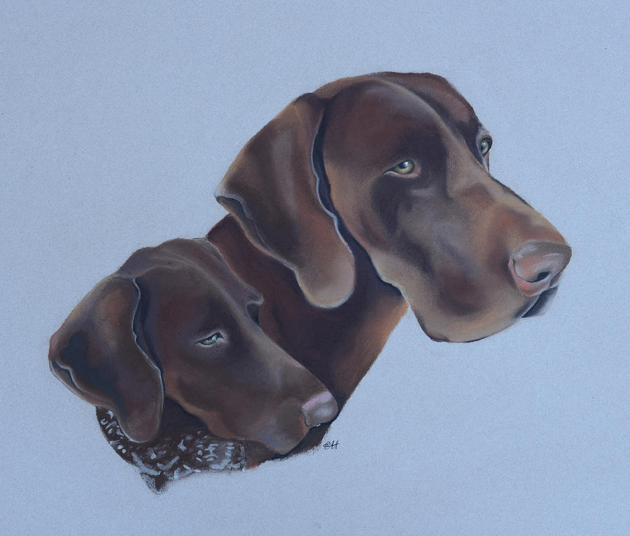 Dos Painting - German Short Haired Pointers by Catt Kyriacou