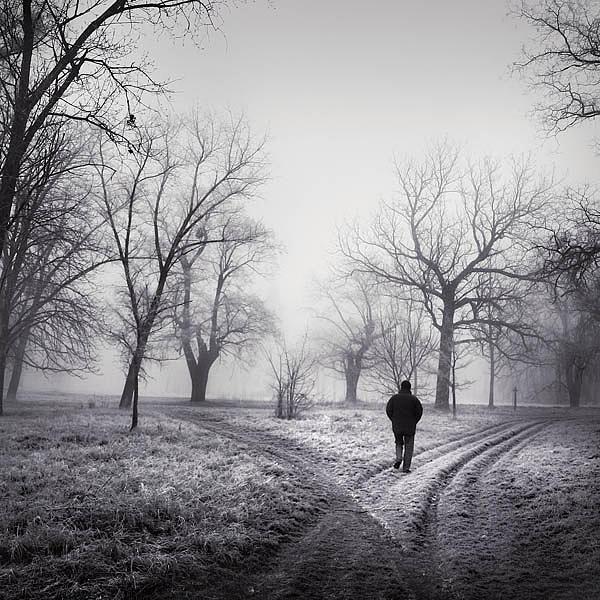 Photograph Photograph - Get Through by Borbala Suto-Nagy