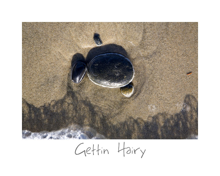 California Photograph - Gettin Hairy by Peter Tellone