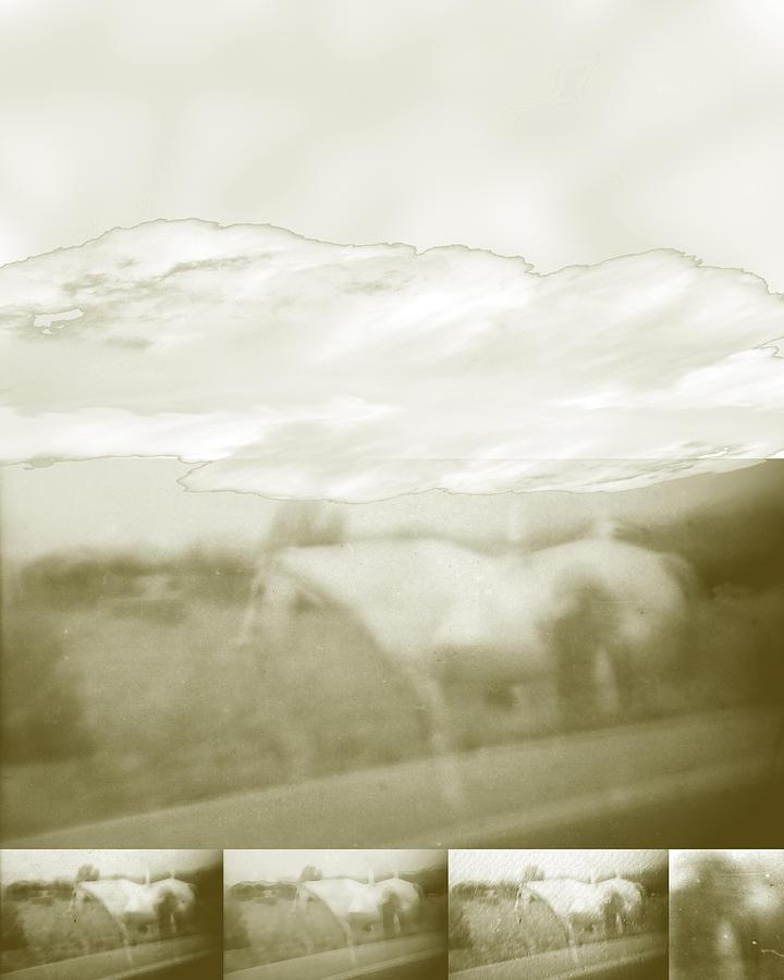 Colorado Digital Art - Ghost Horse Colorado by Ann Tracy