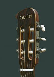Guitar Photograph - Giannini Headstock by Tom Dell