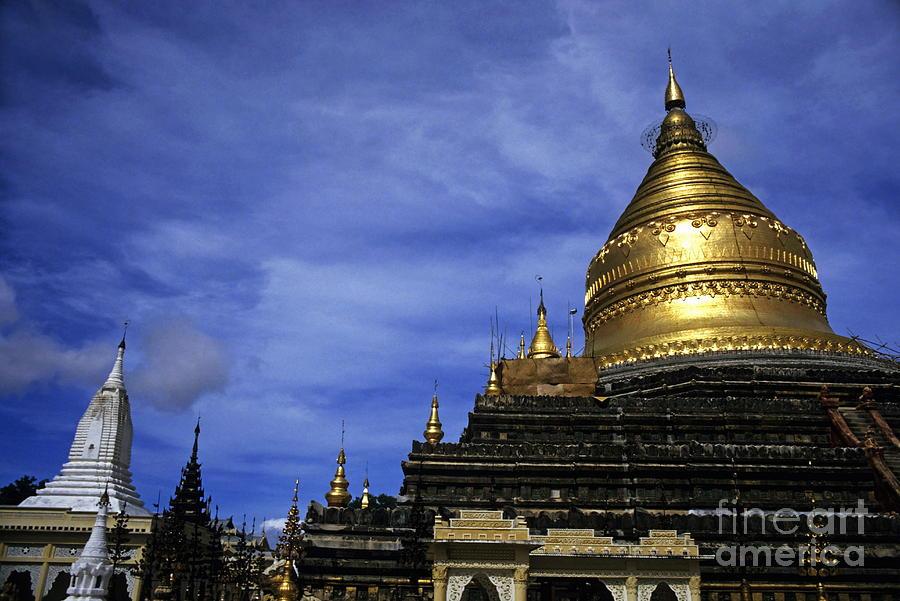 Adult Photograph - Gilded Stupa Of The Shwezigon Pagoda In Bagan by Sami Sarkis