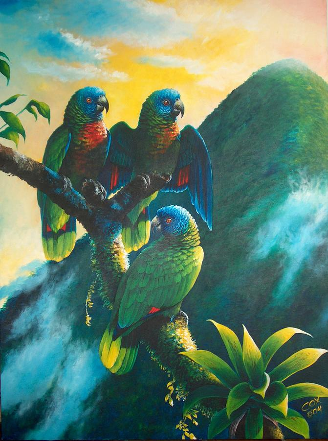 Chris Cox Painting - Gimie Dawn 1 - St. Lucia Parrots by Christopher Cox