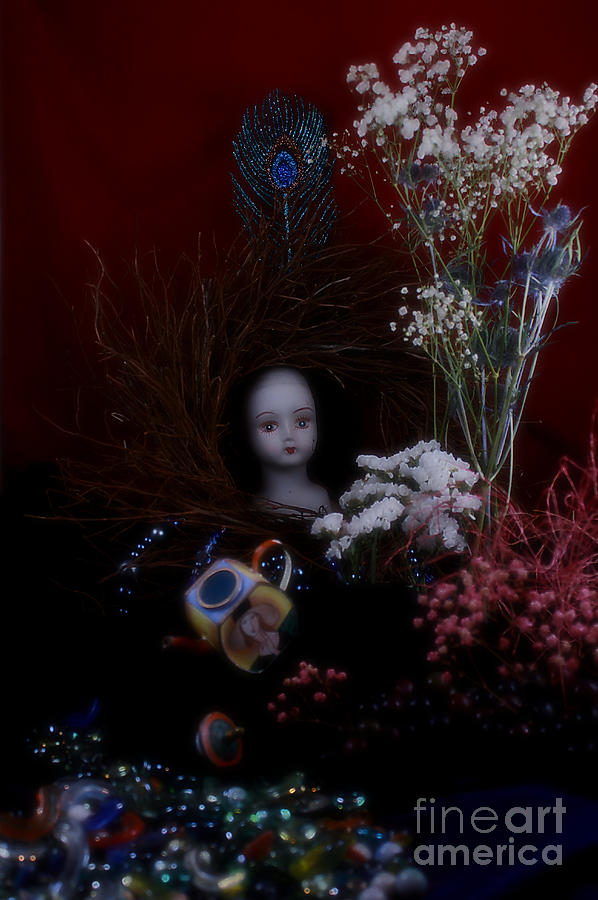 Ginger Amaretto Iv Photograph