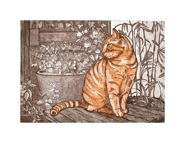 Print Drawing - Ginger Tom by Paul Birchall