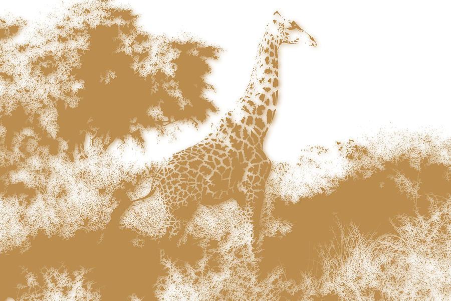 Giraffe Photograph - Giraffe 2 by Joe Hamilton