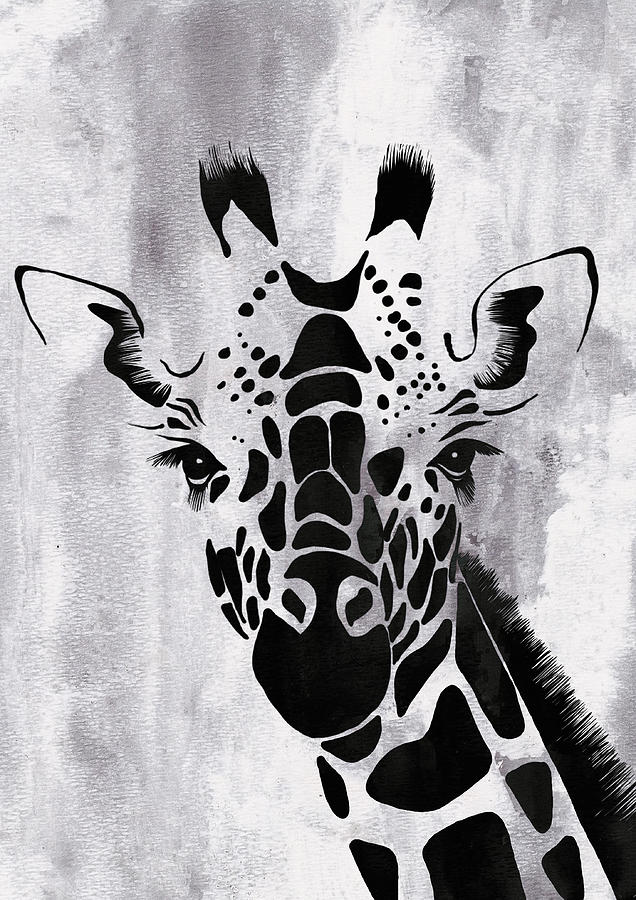 Giraffe Animal Decorative Black And White Wall Poster 7 By Diana Van By Diana Van
