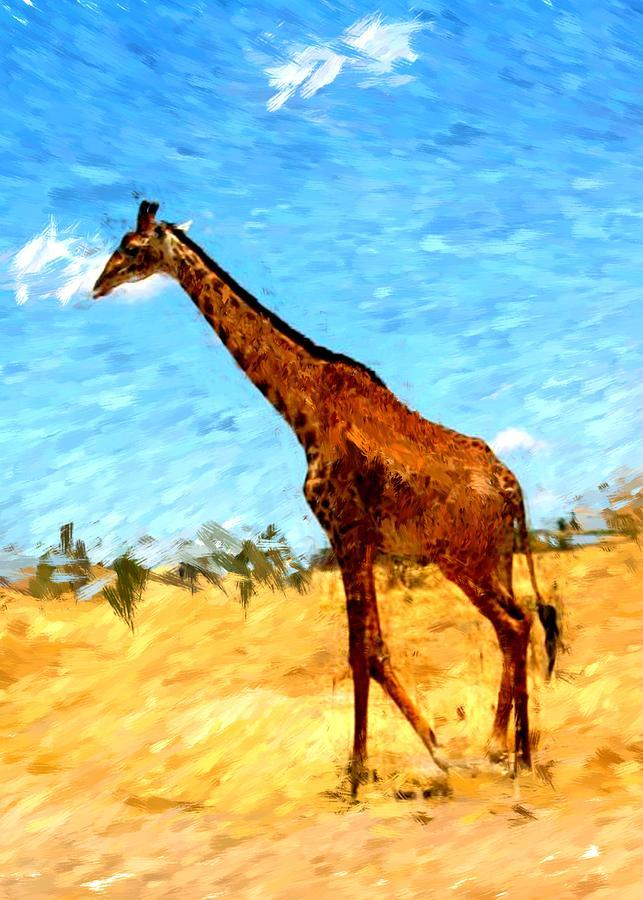 Giraffe Photograph - Giraffe by David Lane