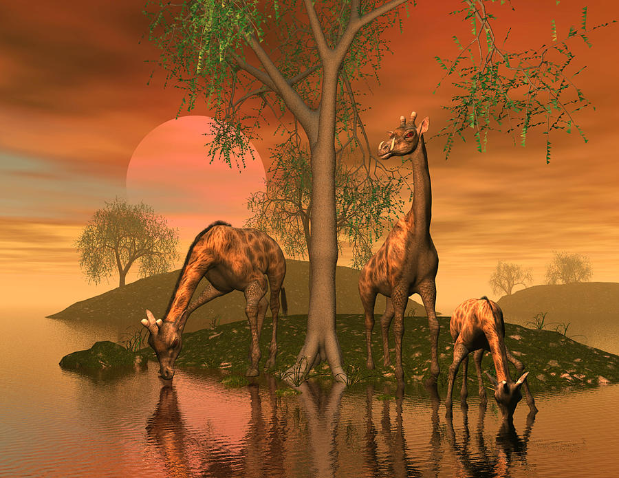 Animals Digital Art - Giraffe Family by John Junek by John Junek