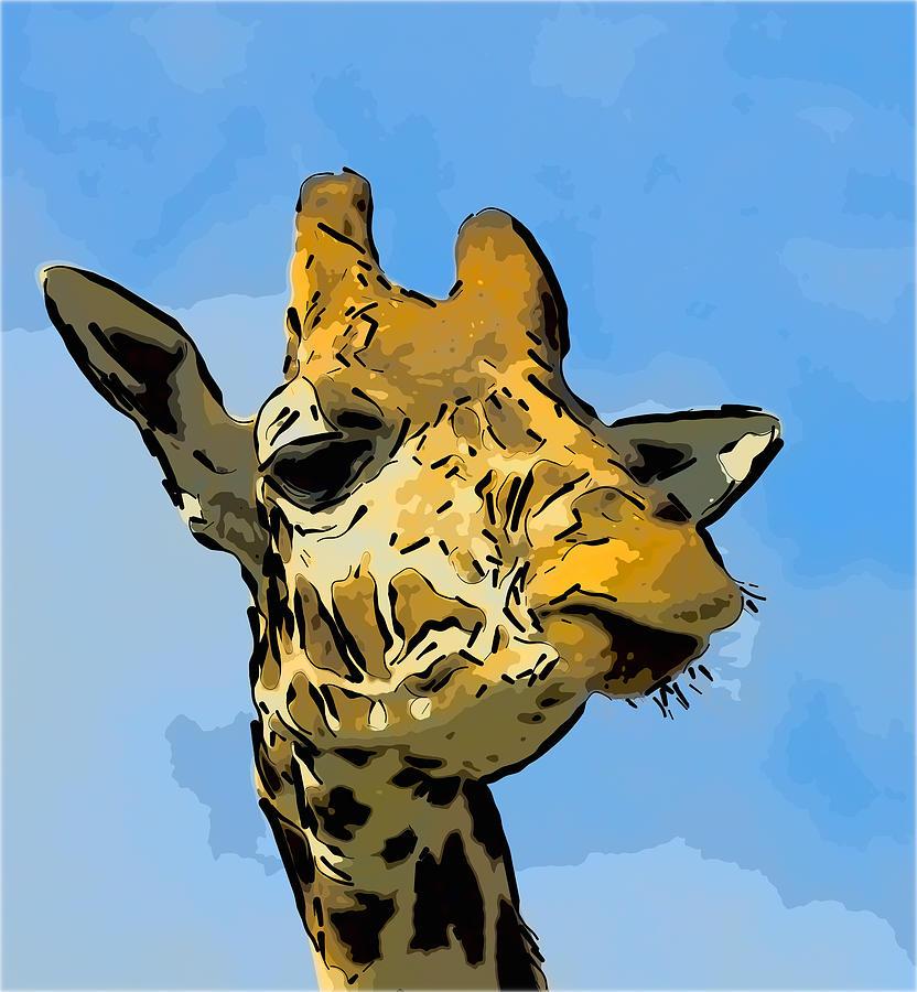 Giraffe Photograph - Giraffe by Gareth Davies