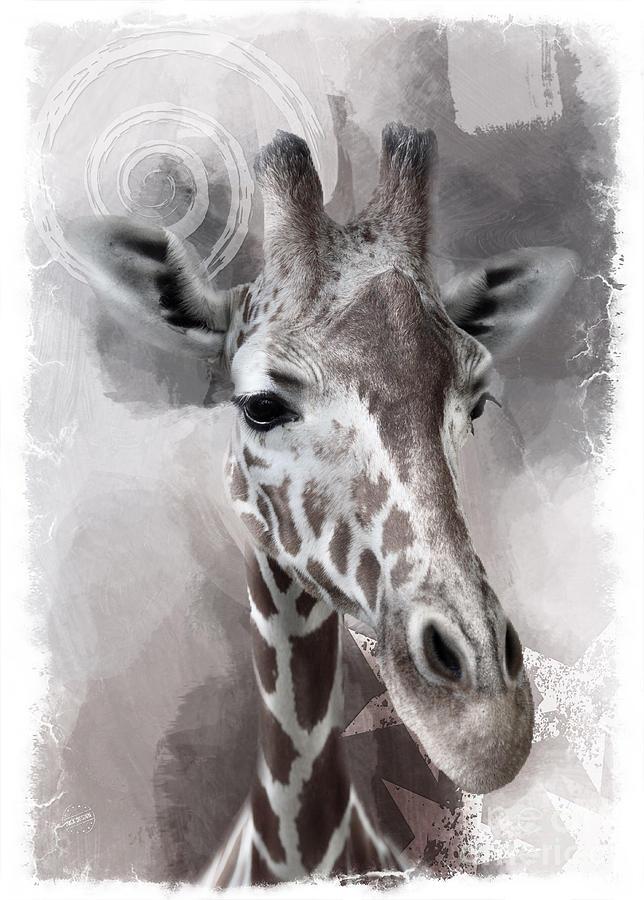 Giraffe Digital Art - Giraffe No 01 by Maria Astedt