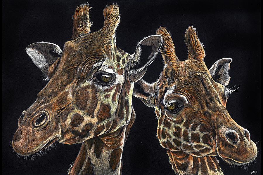 Giraffe Pair by William Underwood