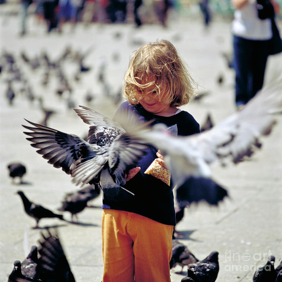 Children Photograph - Girl With Pigeons by Heiko Koehrer-Wagner