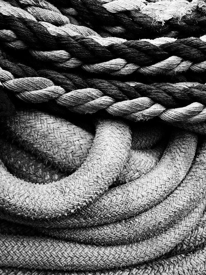 Give Them Some Rope Photograph - Give Them Some Rope by Skip Hunt