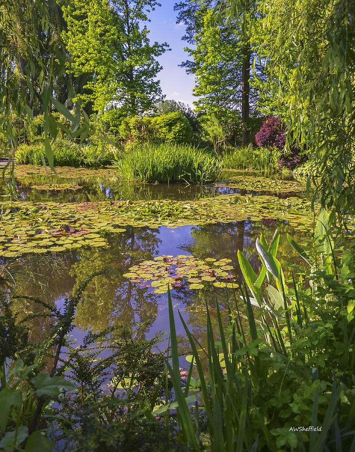 Monet Photograph - Giverny France - Claude Monets Pond  by Allen Sheffield