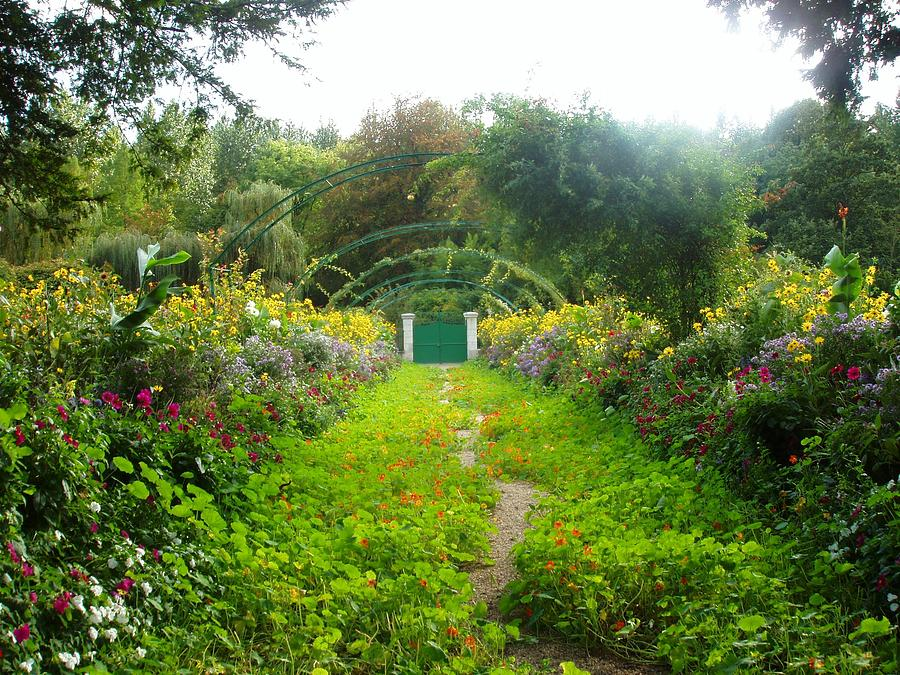 France Photograph - Giverny II by Wendy Uvino
