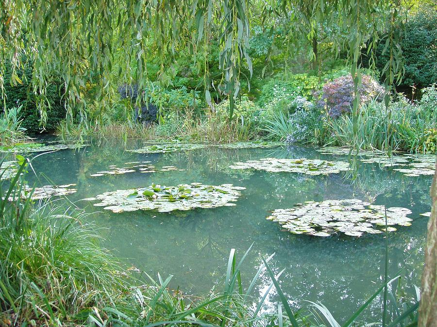 France Photograph - Giverny V by Wendy Uvino