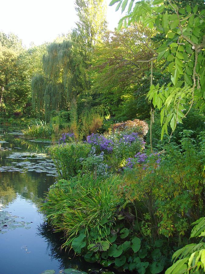 France Photograph - Giverny Vi by Wendy Uvino
