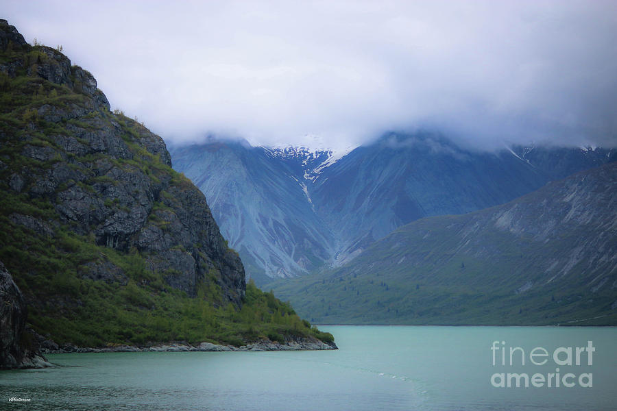 Glacier Bay Alaska Four by Veronica Batterson