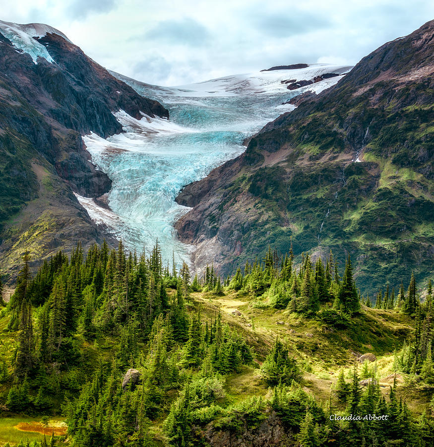 Glacier in an Alpine Meadow by Claudia Abbott