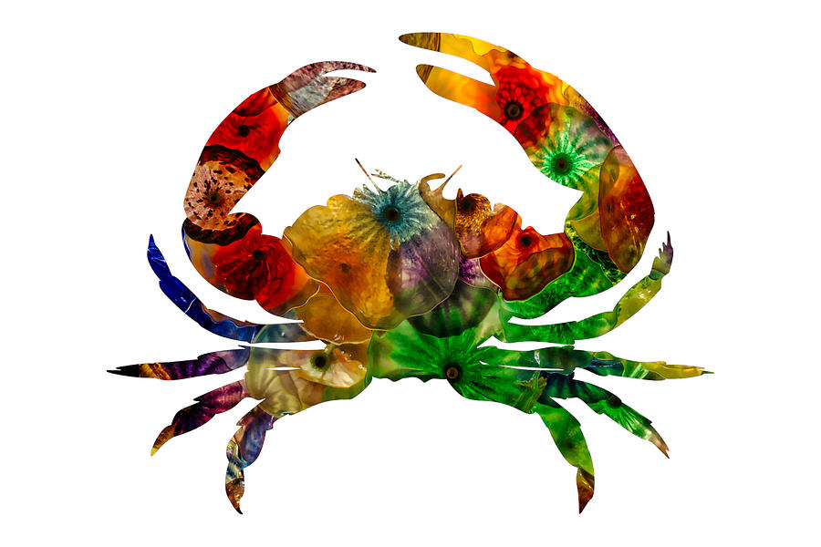 Glass Photograph - Glass Crab by Michael Colgate