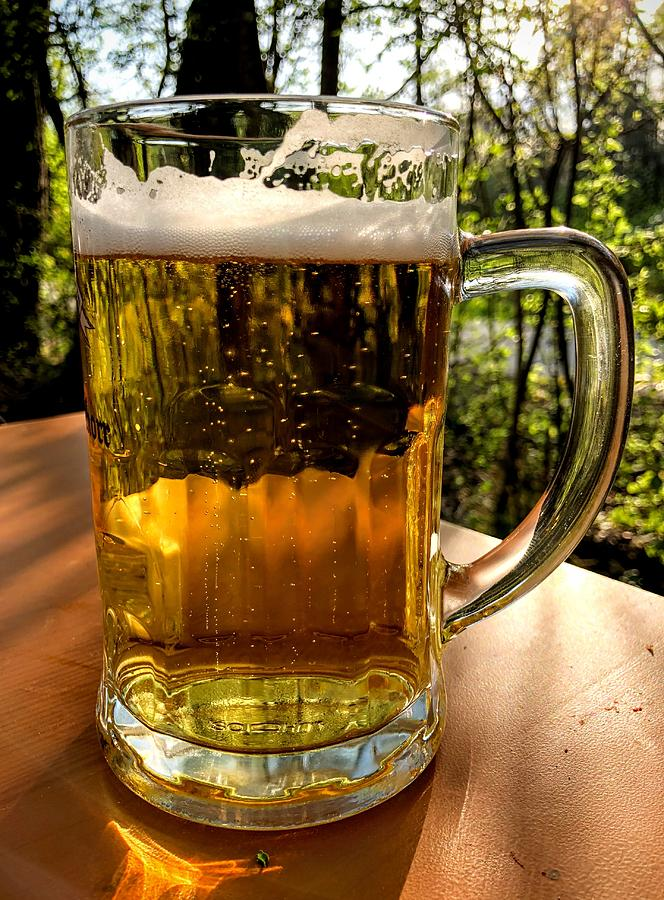 Beer Photograph - Glass of beer by Matthias Hauser