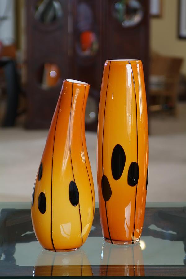 Vase Glass Art - Glass Vase by Howard Elliott