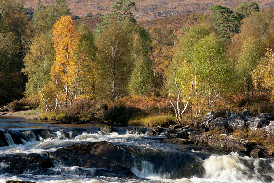 Glen Affric in Autumn by Karen Van Der Zijden