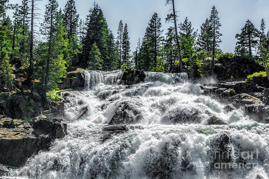 California Photograph - Glen Alpine Falls 7 by Joe Lach