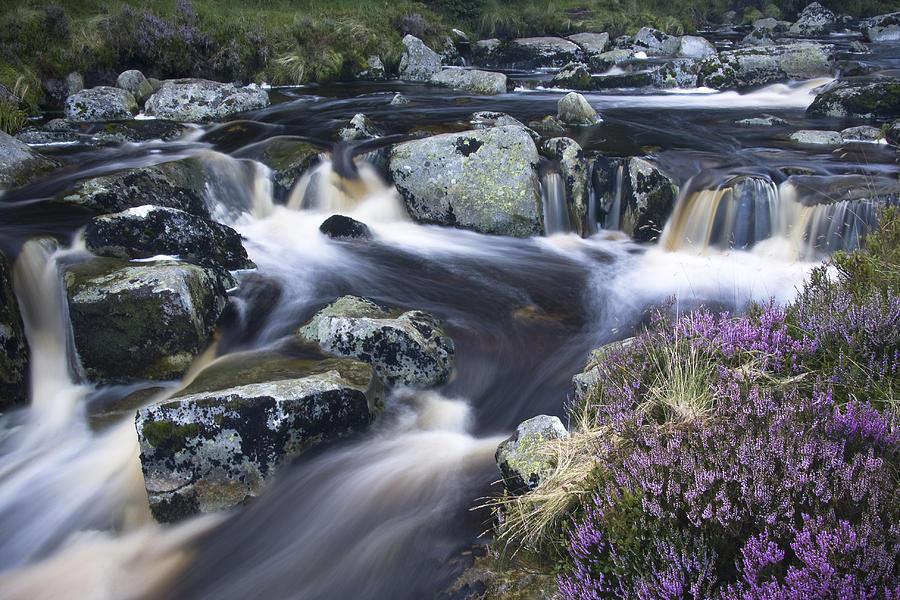 Sally Gap Photograph - Glenmacnass I by Gary Rowe