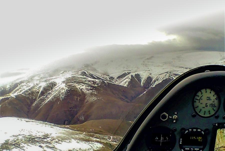 New Zealand Photograph - Gliding by Patrick Flynn