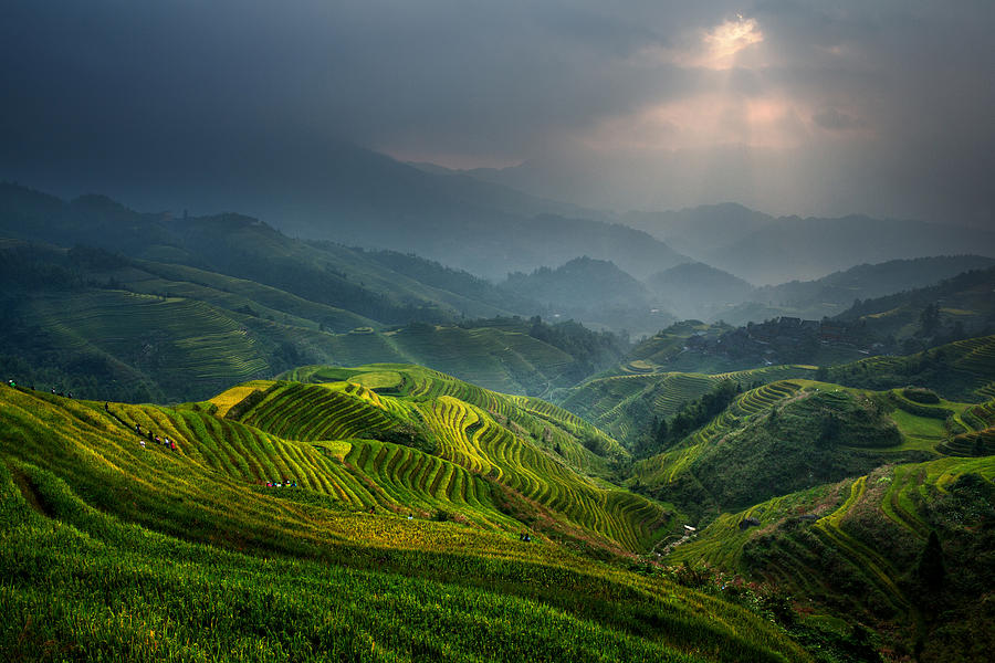 Landscape Photograph - Glimmer Of Light by Gunarto Song