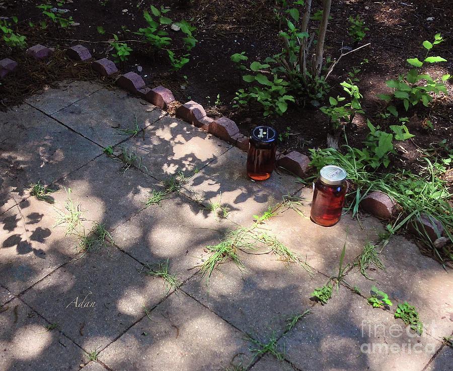Glimpses - Speckled Sun Tea Photograph