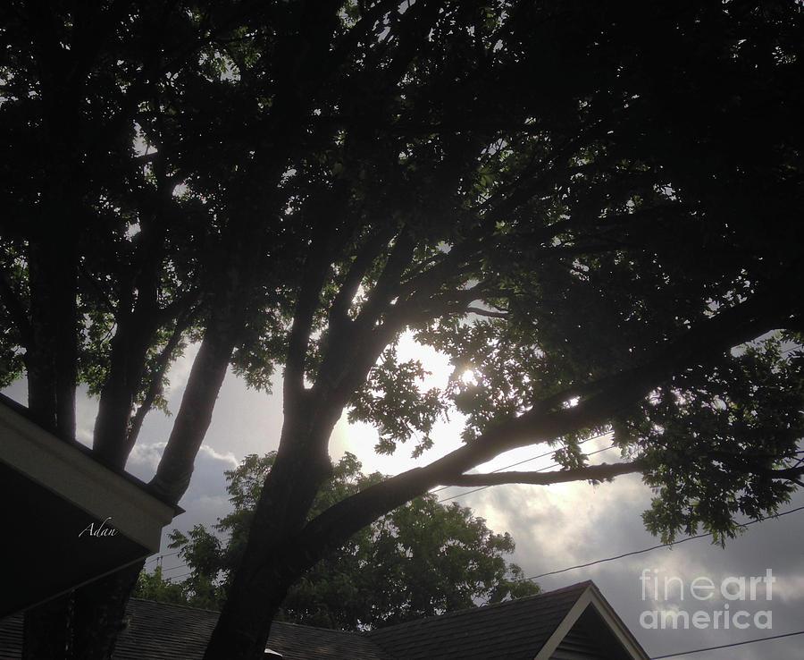 Glimpses - Summer Storm Photograph