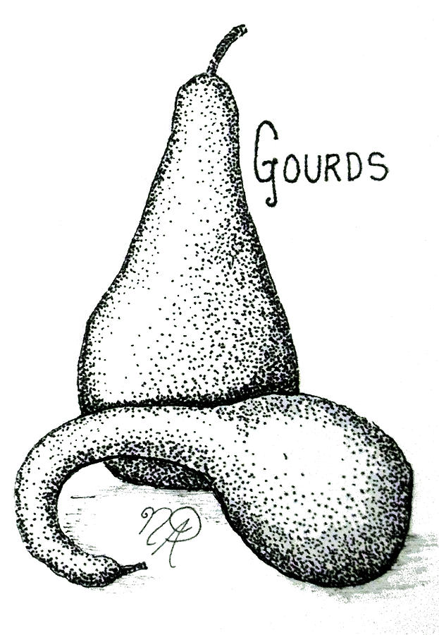 Gourd Drawing - Glorious Gourds by Nicole Angell