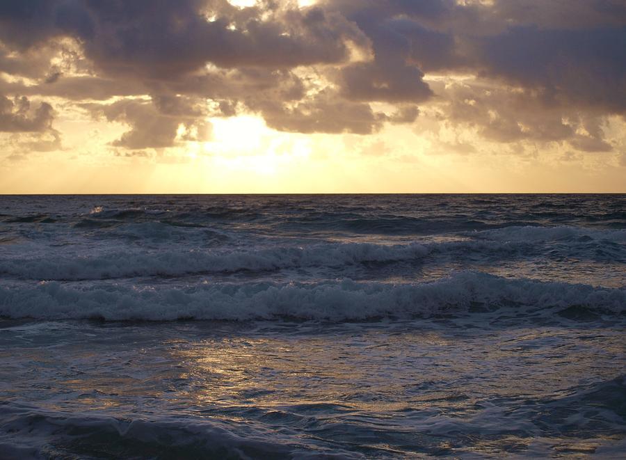 Beach Pyrography - Glorious Harmony by E Luiza Picciano