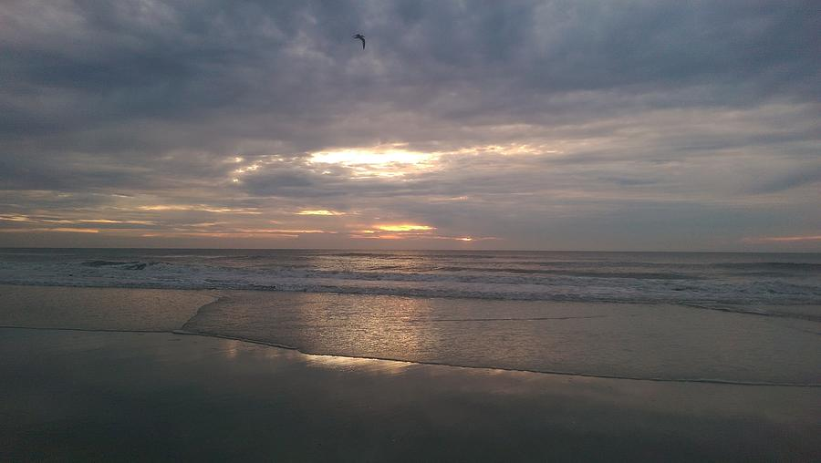 Beach Photograph - Glorious Morning Jacksonville Beach by Mary Lewis