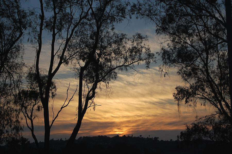 Sunset Photograph - Glory To The West by Jean Booth