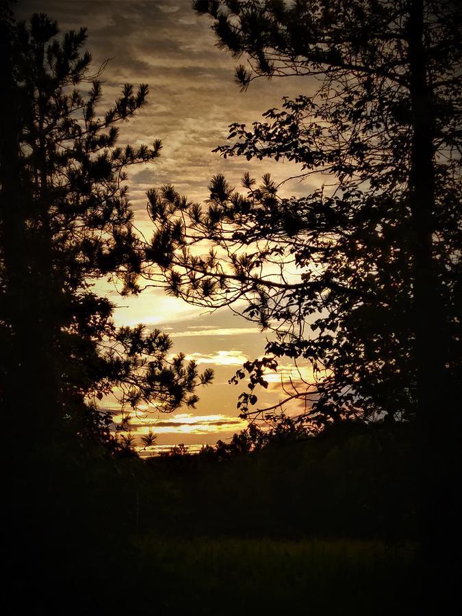 Radiate Photograph - Glow by Jessica Stewart