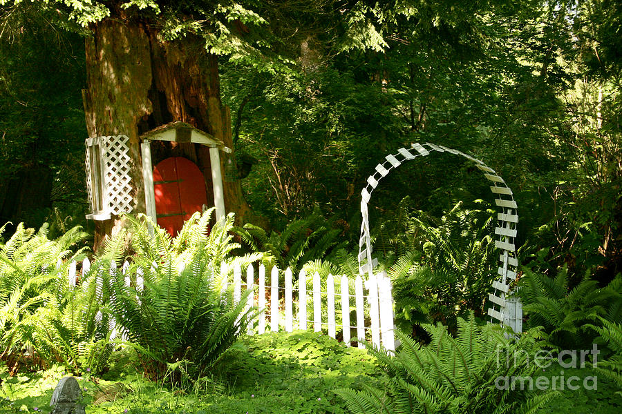 Tree House Photograph - Gnomes House by Robert Nankervis