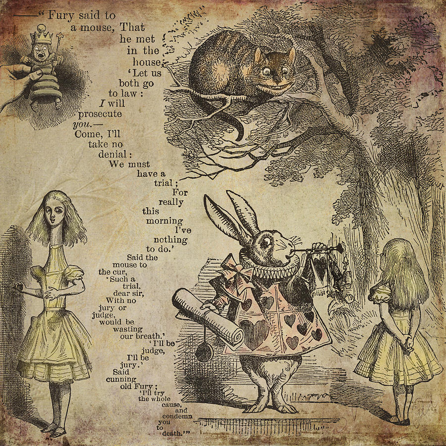 Alice Photograph - Go Ask Alice by Diana Boyd