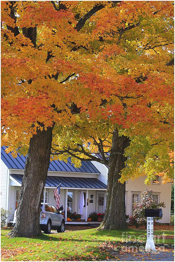 Fall Photograph - Go Right Please by Deborah Benoit