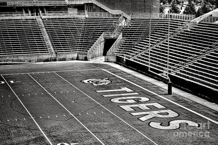 Princeton Photograph - Go Tigers by Olivier Le Queinec