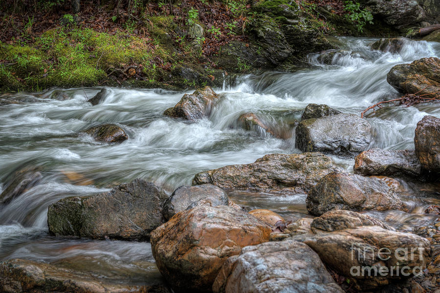 Go with the Flow by Larry McMahon