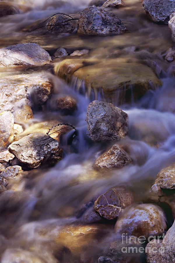 Go With The Flow Photograph