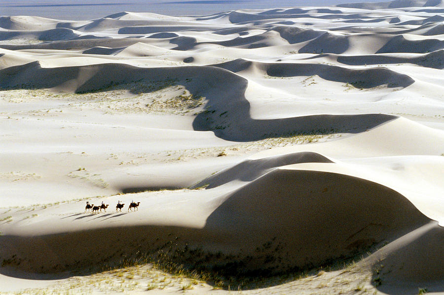 Gobi Desert Photograph - Gobi Desert by Ria Novosti